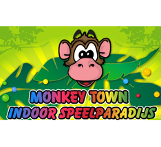 Monkey Town BVadvies